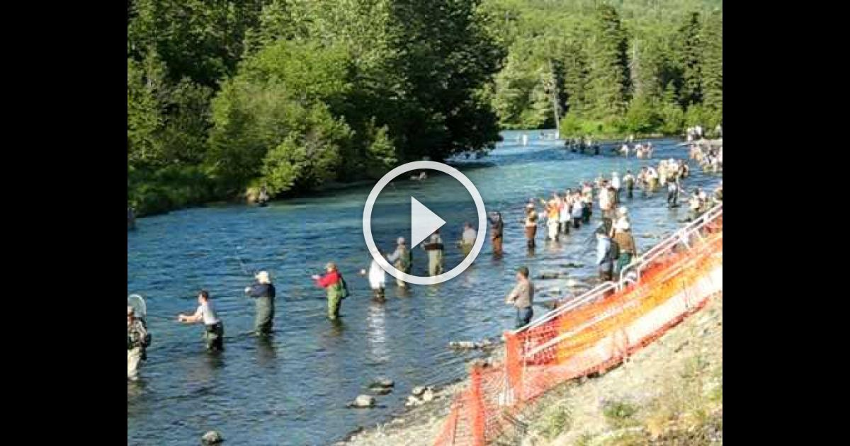 Combat fishing on russian river vinemoments for Russian river fishing
